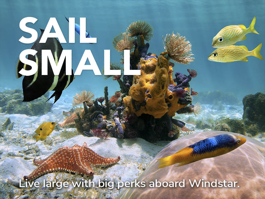 Sail Small - Live large with big perks aboard Windstar